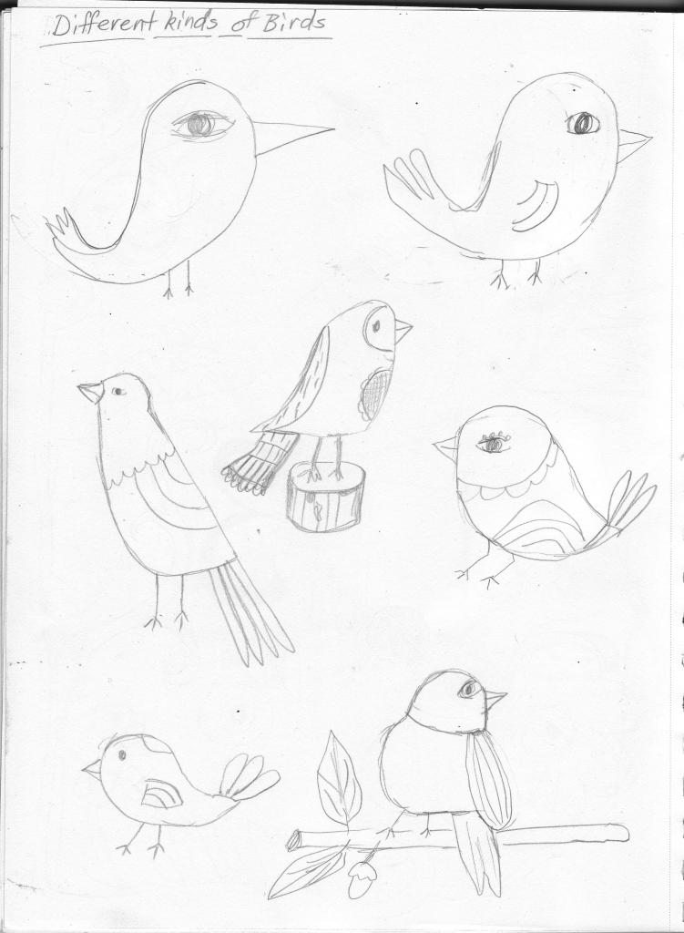 birds_0001